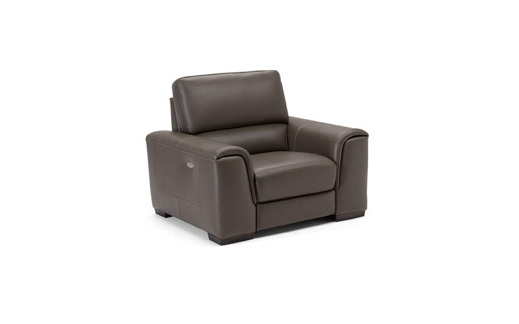 Wondrous Ozio B969 100 Top Grain Leather Sofa Sofas And Sectionals Squirreltailoven Fun Painted Chair Ideas Images Squirreltailovenorg