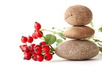 Standing Stones with Rose Hips